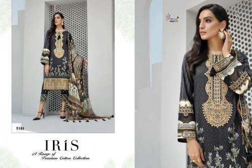 Shree Fabs Iris Premium Cotton Collection 5101-5105 Series